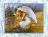 angelwingfeathers