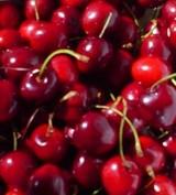 Cherryanne