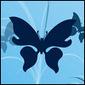 Lilrosebutterfly