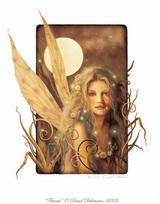 sfirefly