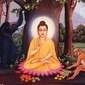 Buddhism Q&A