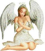 webangel61