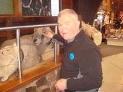 Steve in New Zealand